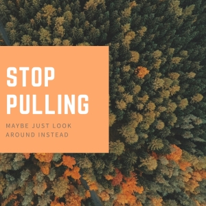 stop-pulling-1